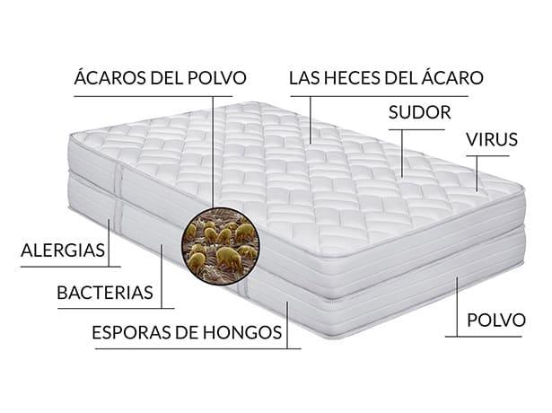 suciedad en colchón
